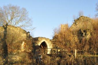 Zřícenina hradu Rýzmberk