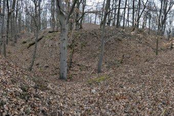 Zřícenina hradu Ruchomperk