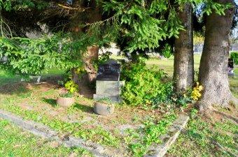 Pomník na hrobu obětí pochodu smrti a pomník vojenské vzpoury v Železné Rudě