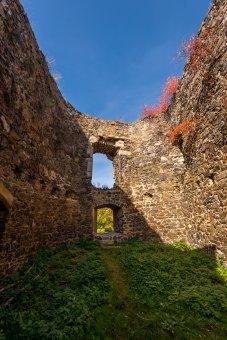 Zřícenina hradu Vlčtejn
