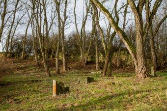 Židovský hřbitov v Městě Touškově