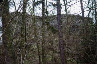 Zřícenina hradu Buben u Plešnic