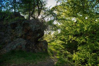 Zřícenina hradu Radeč u Těškova