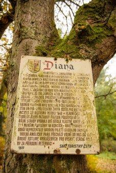 Zámek Diana u Rozvadova (čp. 1)