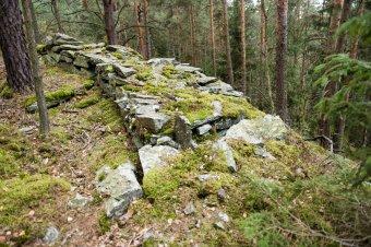 Zřícenina hradu Šontál u Krásného Údolí