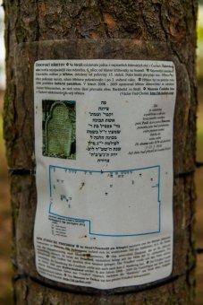 Židovský hřbitov ve Stráži